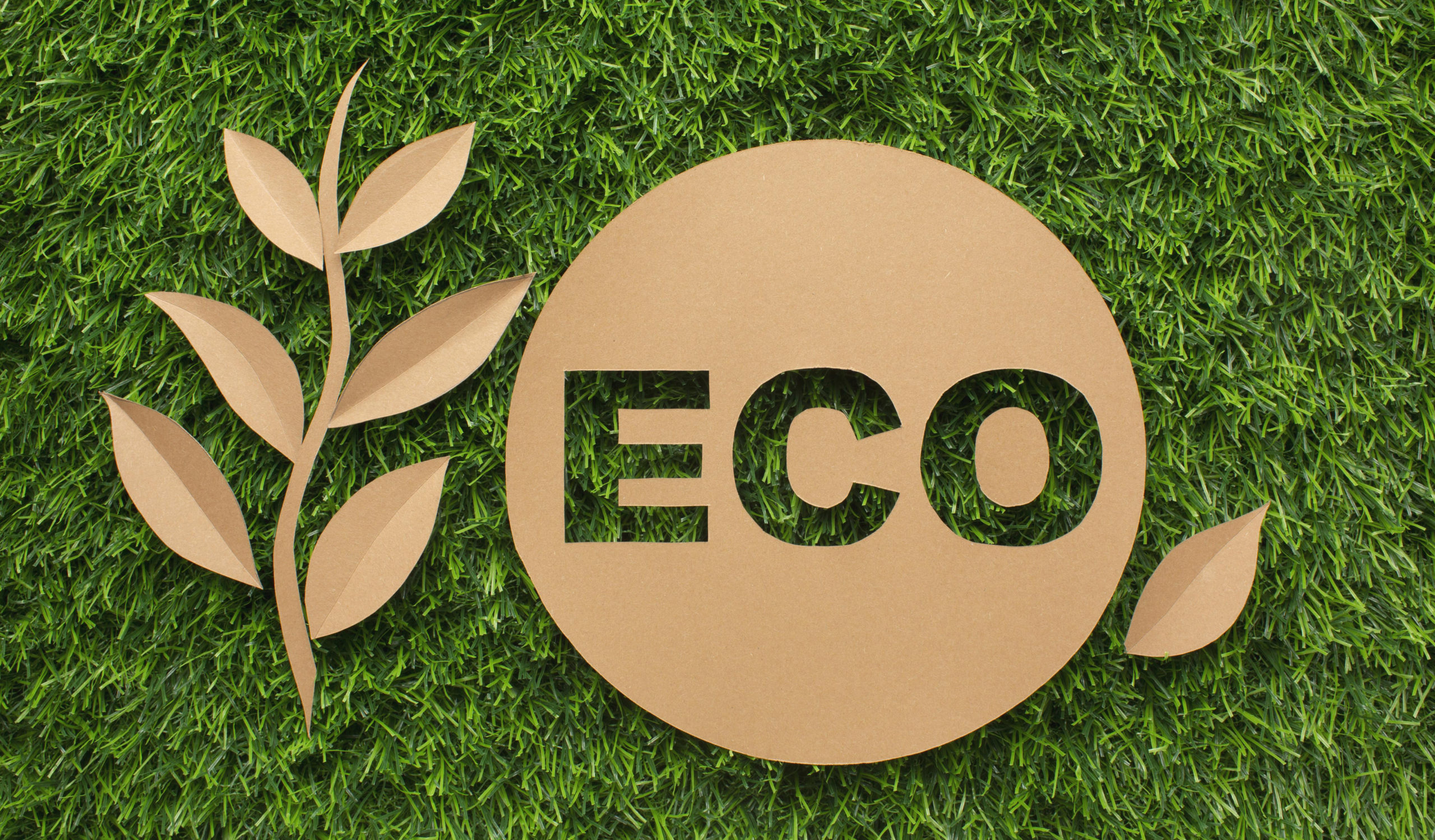 Ghid Eco